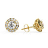 Polaris Stud Earrings in Yellow Gold