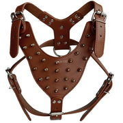 Spiked Studded Dog Harness - Posh Pooch Accessories