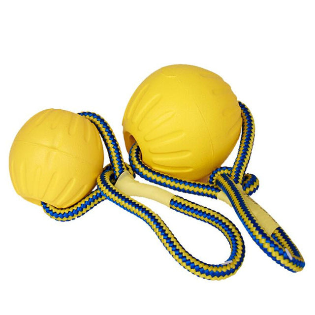 Indestuctible Dog Training Toy Ball - Posh Pooch Accessories