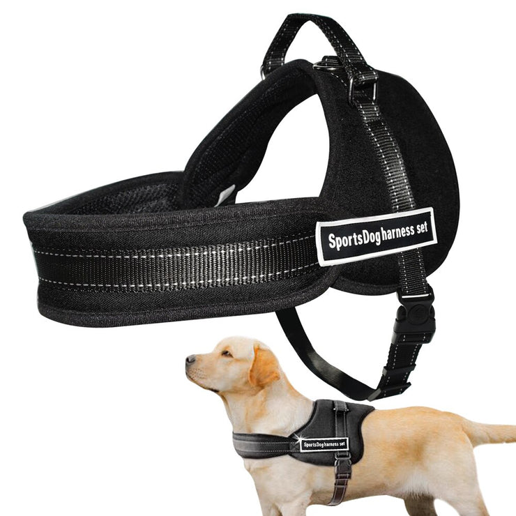 Dog Harness Nylon Soft Padded No Pull Dog Harness - Posh Pooch Accessories