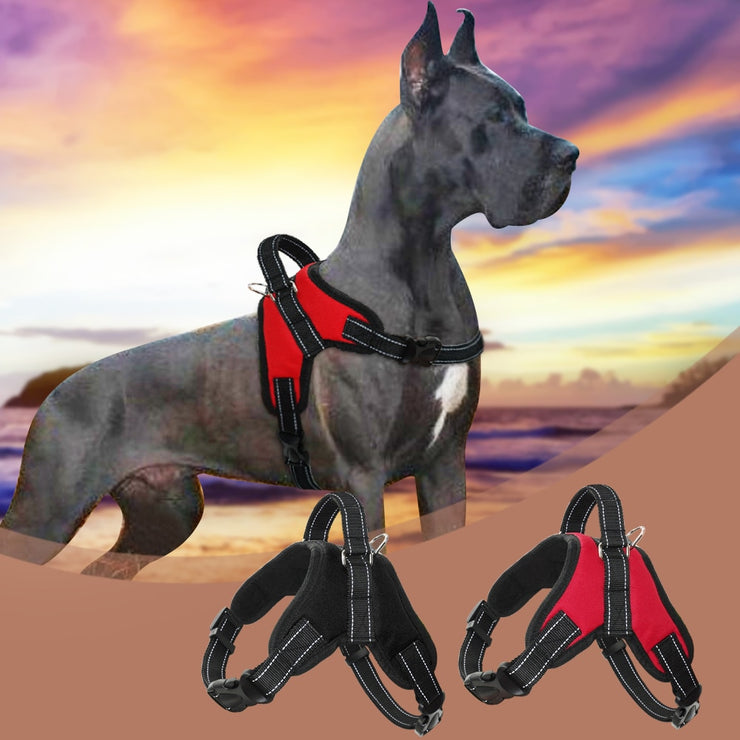 Large Dog Harness Quick Control Dogs Harness Nylon - Posh Pooch Accessories