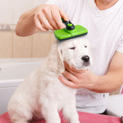 Self Cleaning Dog Slicker Brush Dog Hair Grooming - Posh Pooch Accessories