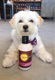 Aromatherapy Shampoo - Posh Pooch Accessories
