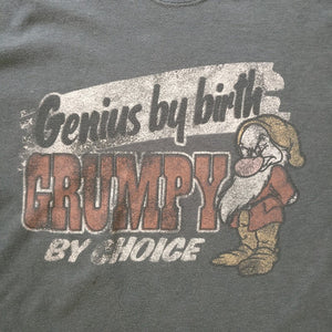 Camiseta Grumpy Walt Disney World