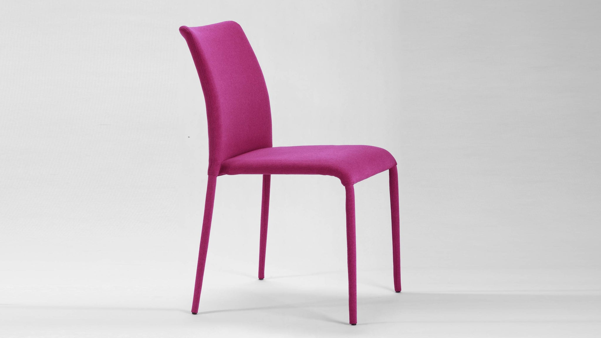 Contemporary Coloured Dining Chair