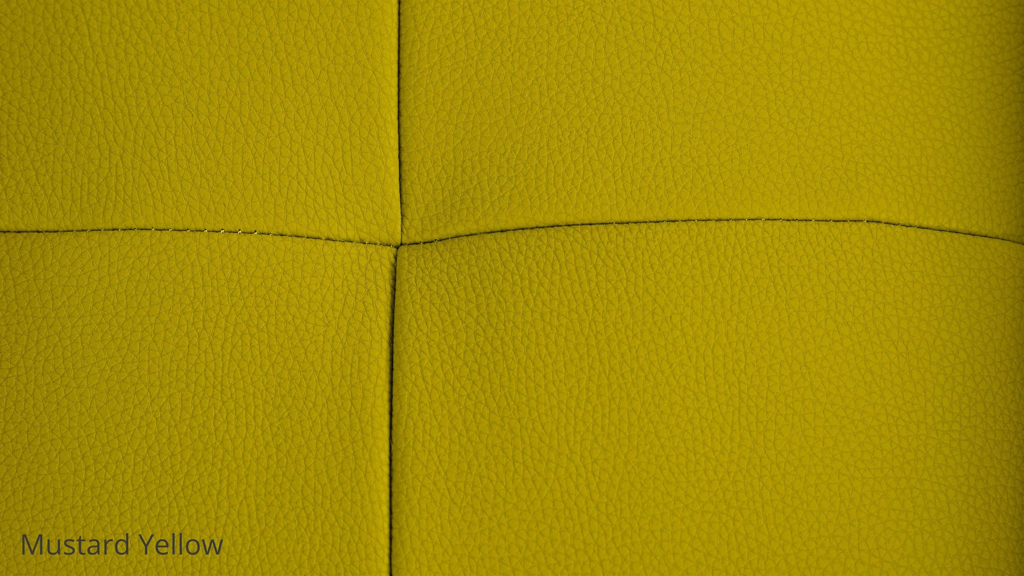 Bold Bright Leather