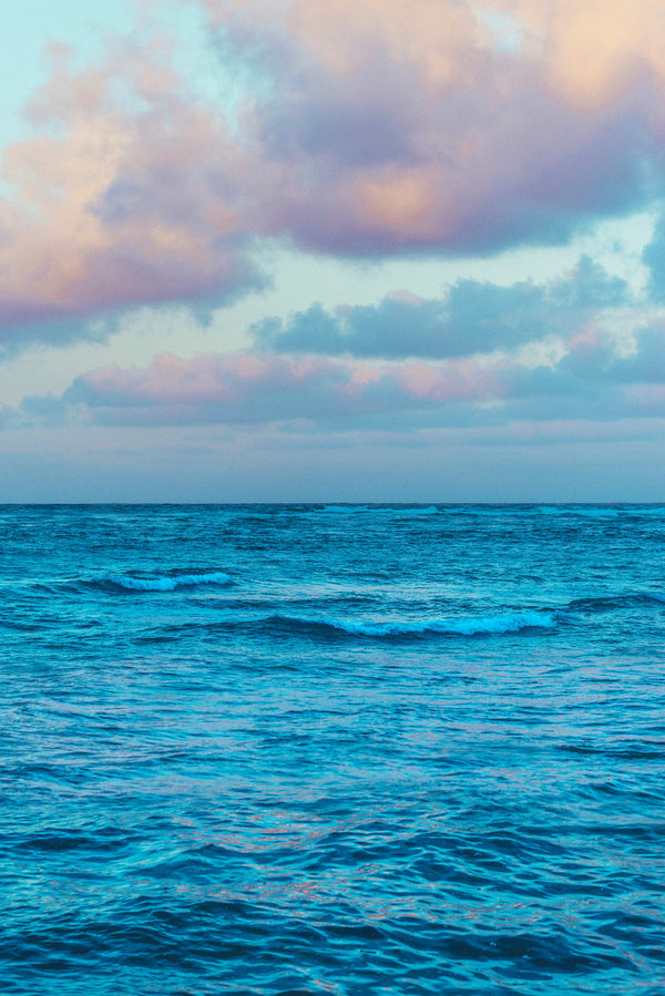 Hawaiian Seascape