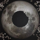 1000 Pcs Puzzle Adult Large Moon Puzzles High Difficulty Puzzles Planet Puzzle Adults Kid Gift 67.5*67.5CM Decompression toys