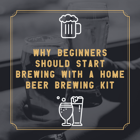 Why beginners should start brewing with a home beer brewing kit