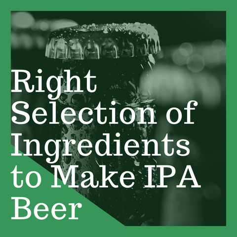 Right Selection of Ingredients to Make IPA Beer