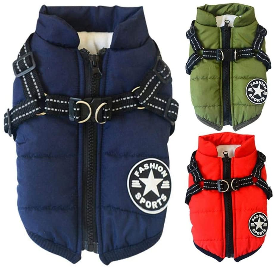 Dogs winter jackets