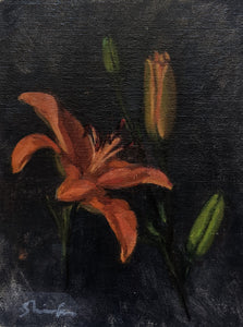 Study of Orange Lilies