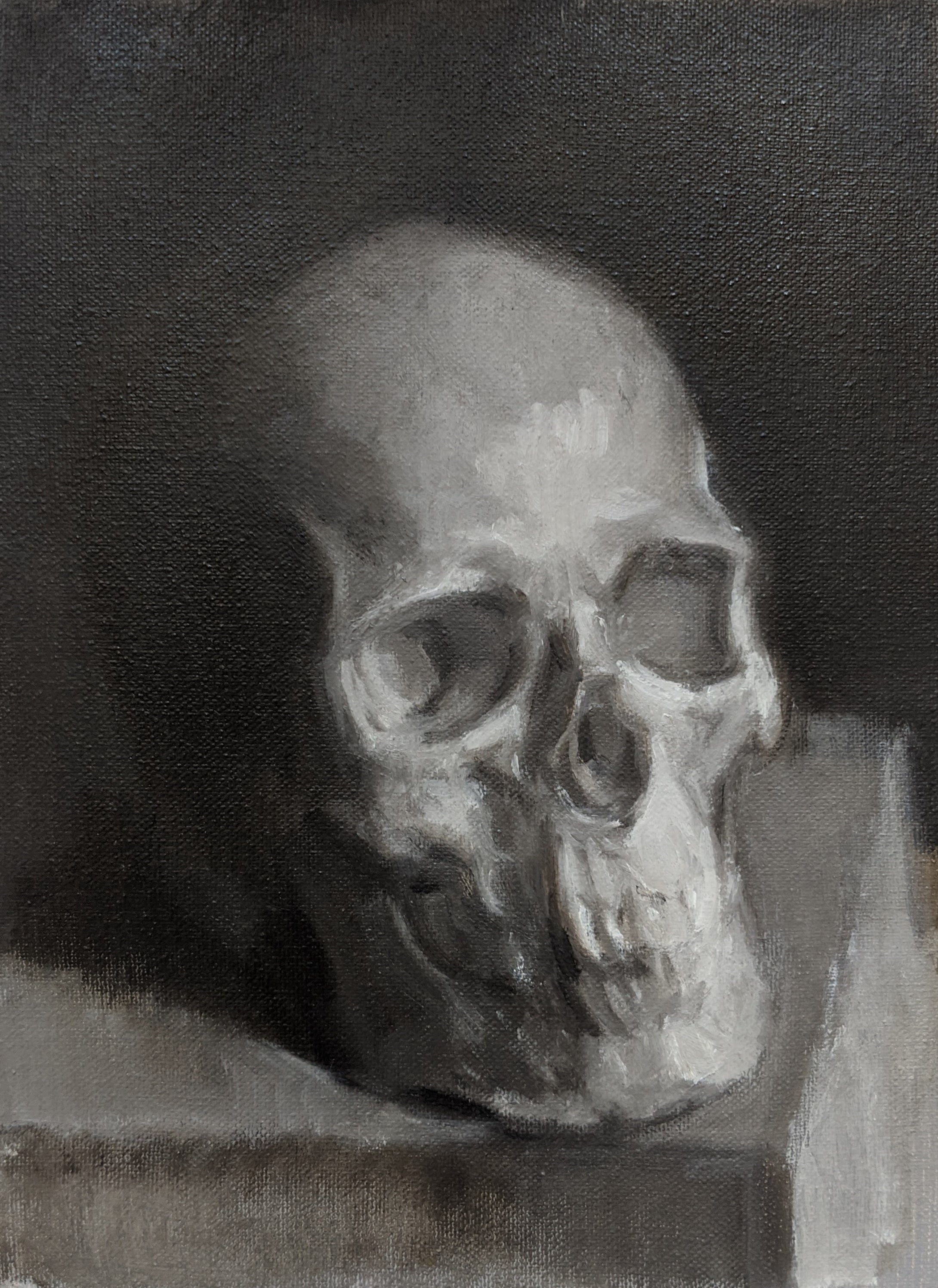 Skull Study in Black and White