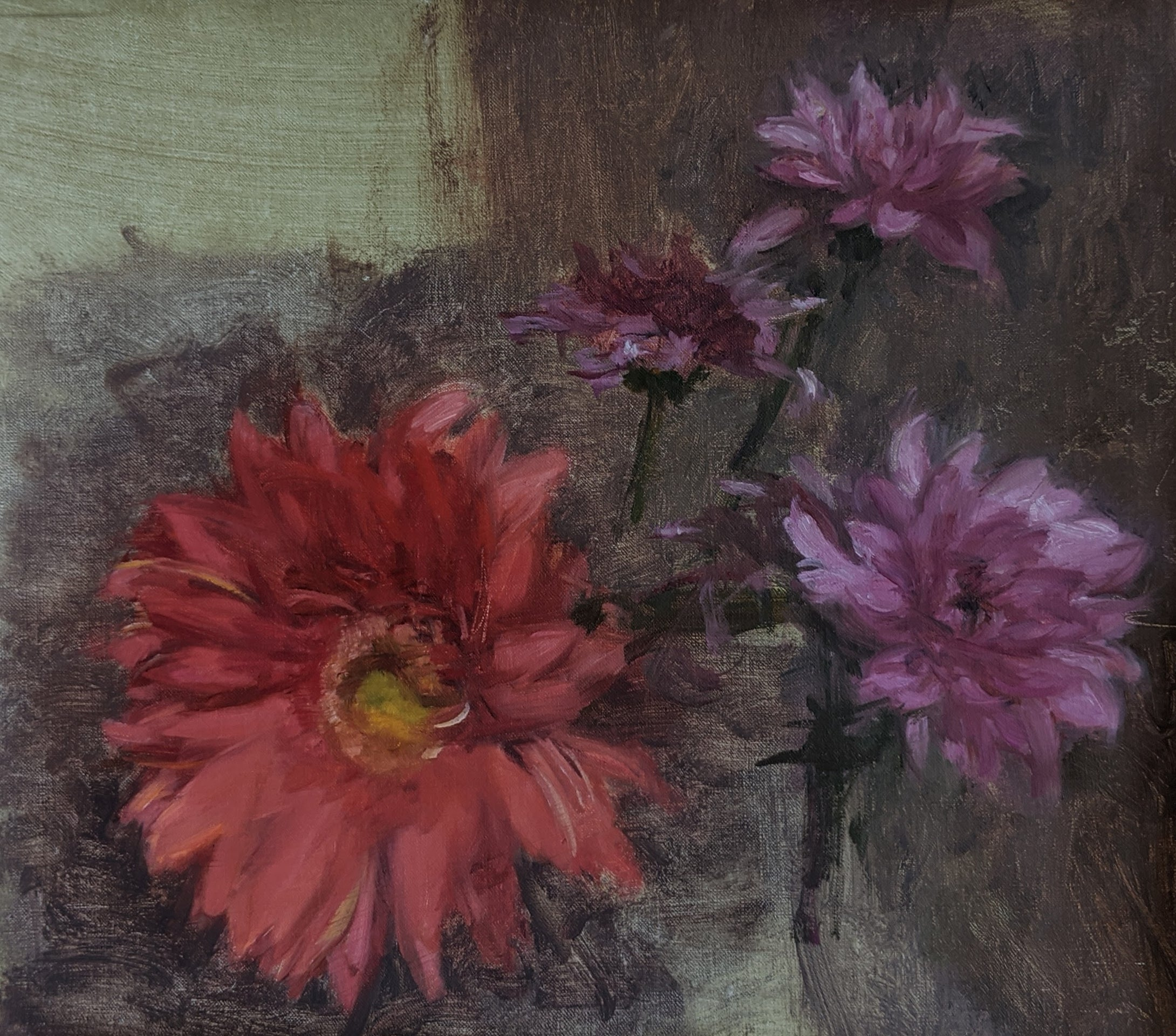 Study of Gerber Daisy and Mums