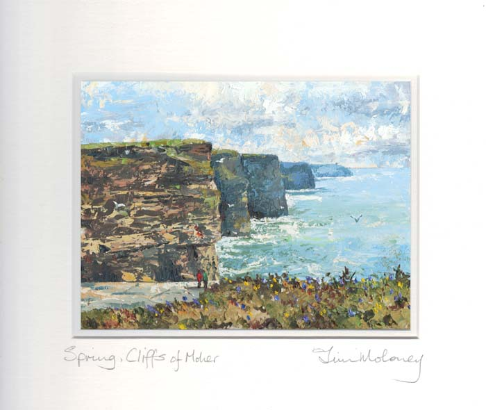 Spring, Cliffs of Moher