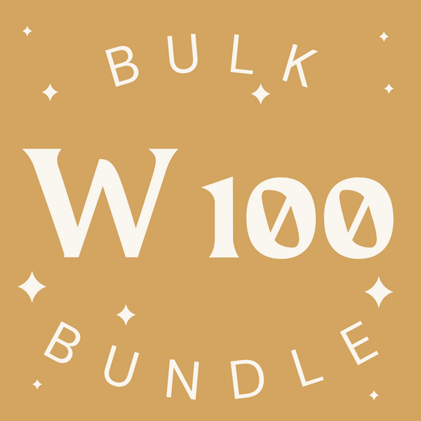 Womenswear 100 Item Bulk Bundle