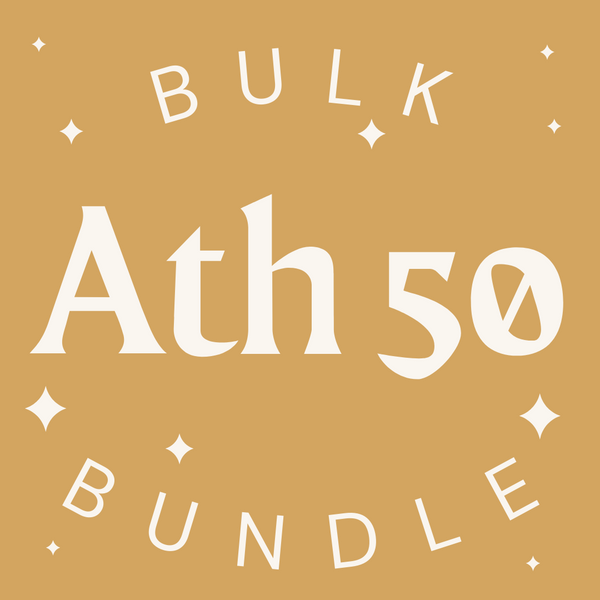 Athleisure 50 Item Bulk Bundle - Fashion Without Trashin