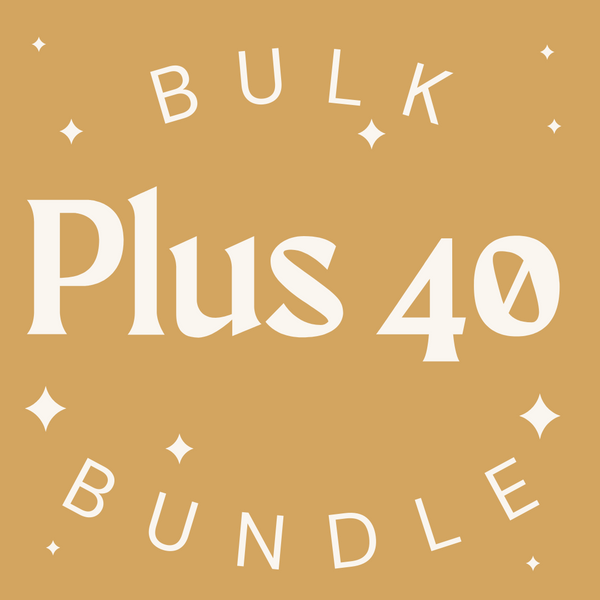 Plus Size 40 Item Womens Bulk Bundle