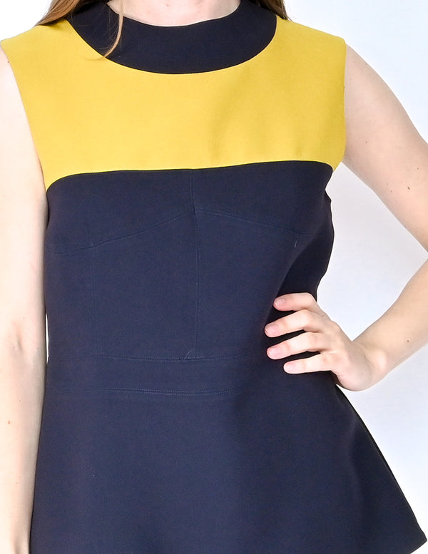 MARNI Colorblock Sleeveless Fitted Top (Size 8)