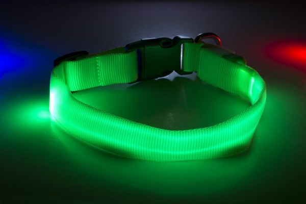 Led Dog Collar High Quality By The Pet S Tech