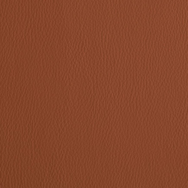 Silicone Valley - Indoor Outdoor Faux Leather