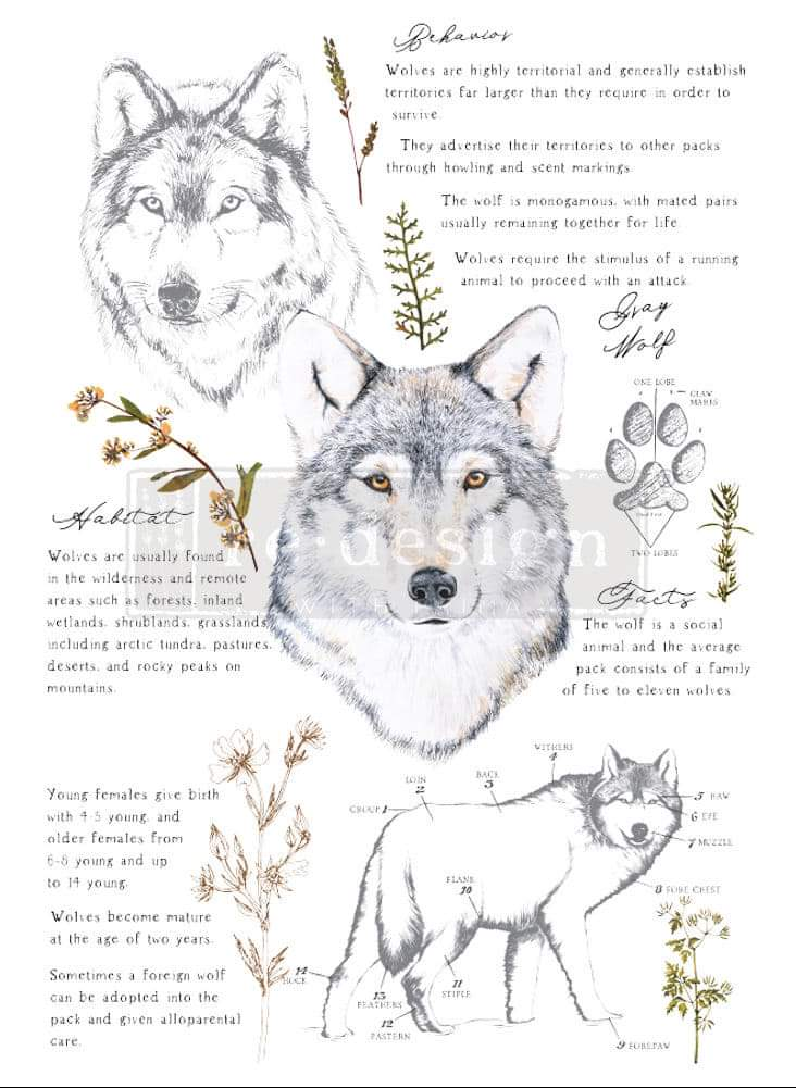 *New * Redesign Decor Transfer Gray Wolf