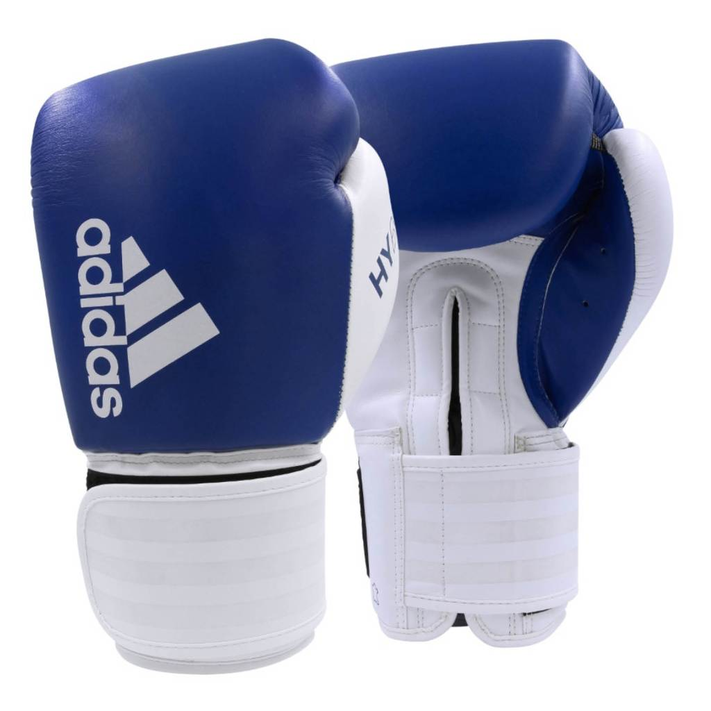 Hybrid 200 Boxing Gloves