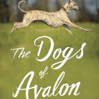 Book - Dogs of Avalon