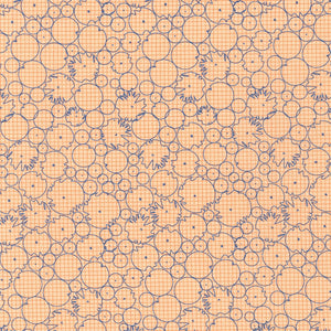 Cantaloupe Abstract Circles