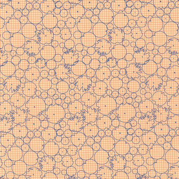 CF-Cantaloupe Abstract Circles