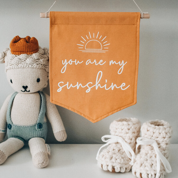 You are my sunshine flag