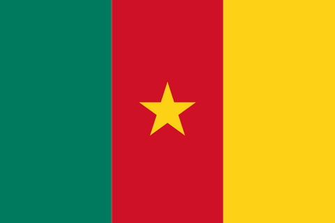 Cameroon Waver Flag