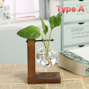 Hydroponic Plant Vases Vintage Flower Pot Transparent Vase Wooden Frame Glass Tabletop Plants Home Bonsai Decor