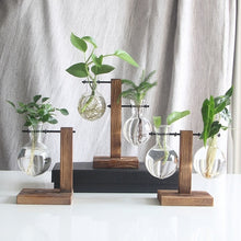Load image into Gallery viewer, Hydroponic Plant Vases Vintage Flower Pot Transparent Vase Wooden Frame Glass Tabletop Plants Home Bonsai Decor