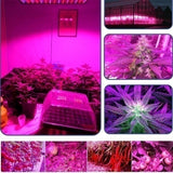 LED Plant Grow Light Harmless Full Spectrum Veg Bloom Lamp Indoor Greenhouse Garden with Switch US/EU/UK/AU Plug