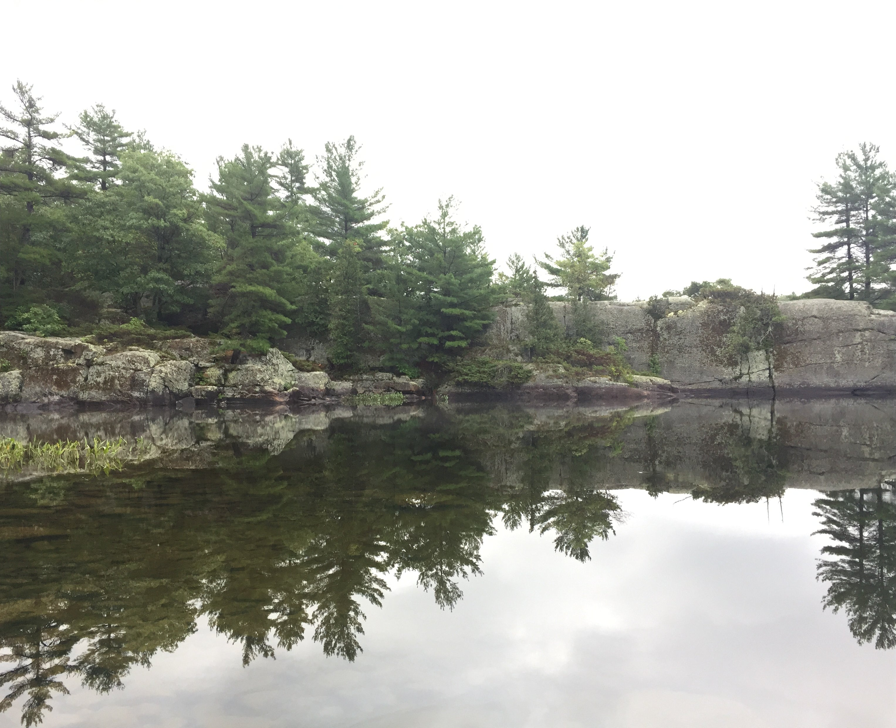 peaceful scene of trees, lake and mossy rock on a calm misty day at Massausga Provincial Park