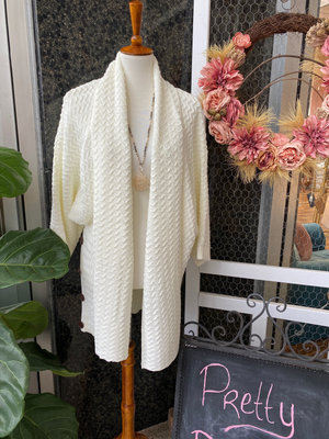 Cozy Cardigan in Ivory