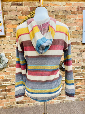 Multi-striped Knit Hoodie