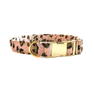Medium / Large Dog Collars