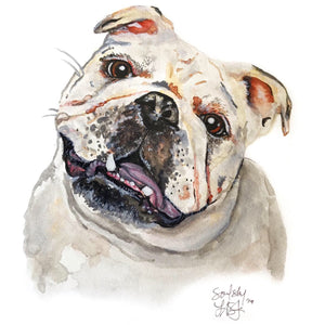 Watercolor Pet Portrait (Mulligan Series)