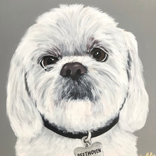Load image into Gallery viewer, Acrylic Pet Portraits (Mulligan Series)
