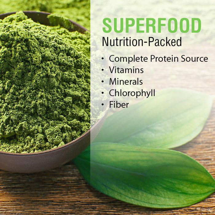 Solaray Broken Cell Chlorella 410 mg | Nutrient-Rich Superfood w/ Naturally Occurring Protein, Vitamins, Minerals, Chlorophyll | Non-GMO | 100 VegCaps