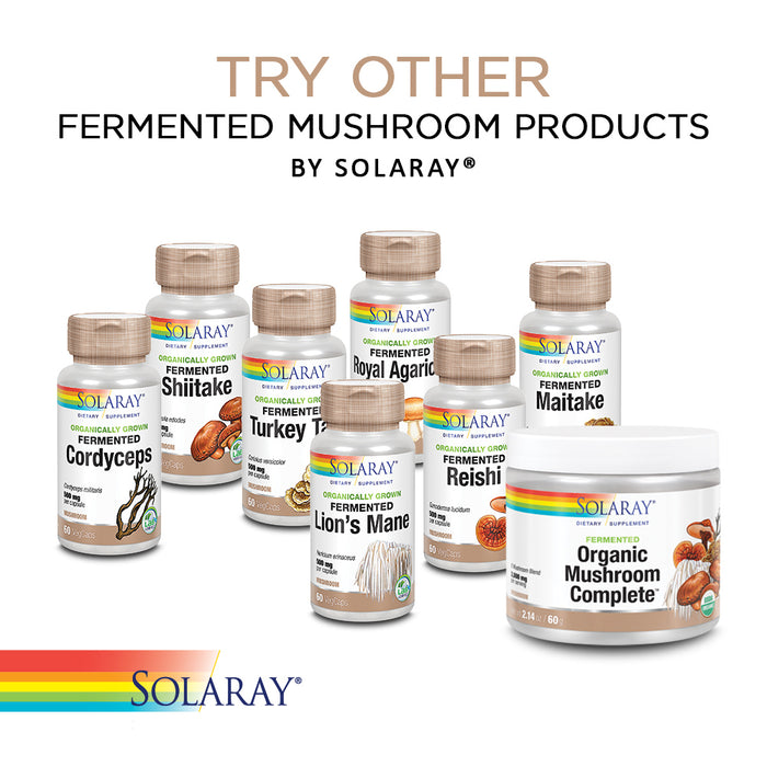 Solaray Fermented Chaga Mushroom 500 mg | Healthy Immune Function Support | 30 Servings | 60 VegCaps