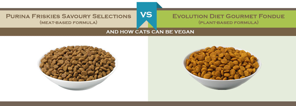 Comparison of meat- and plant-based food for Cats
