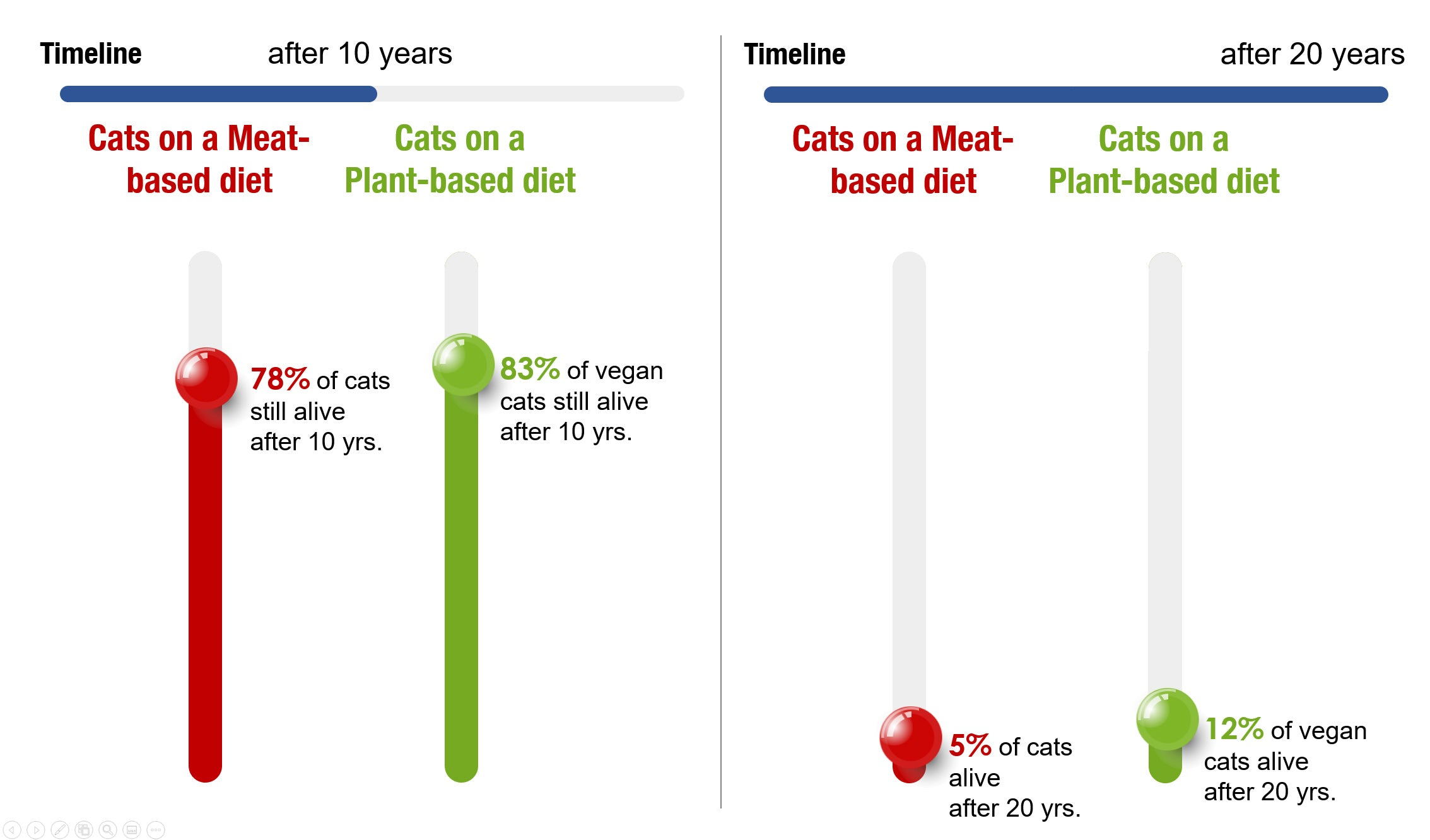longevity of cats on a vegan diet / lifespan of cats on plant-based diet