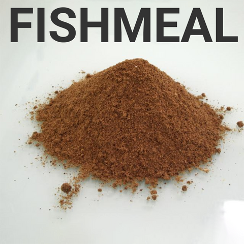 fishmeal is used in pet food