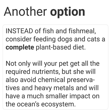 vegan dog food and vegan cat food are great alternatives to fishmeal containing pet foods