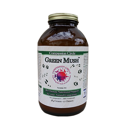 Green Mush™ - The Ultimate Superfood