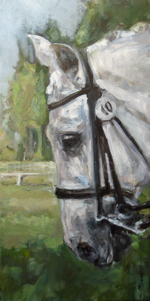 White horse painting on canvas, double bridle, dressage scene, by Nina Smart.