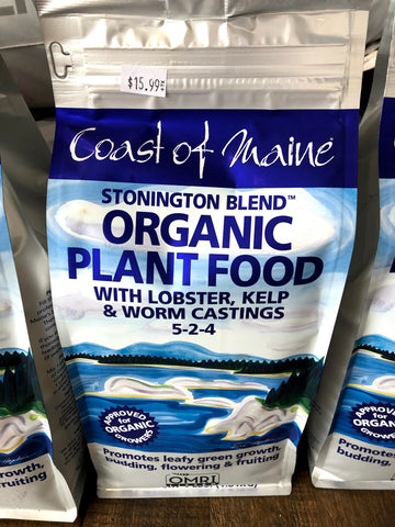 Coast of Maine Stonington Blend